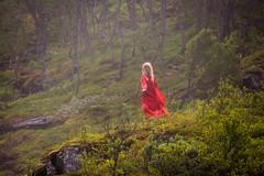 DSC00556.jpg (jaar aee) Tags: norway landscape scenic fjord norwayinanutshell huldra sognogfjordane