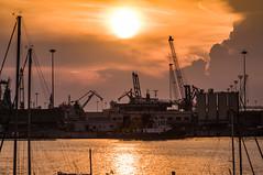Golden sunset (NIKOZAR (Nicola Zaratta)) Tags: sunset cloud italia nuvole mare porto puglia sunsetsea tramontosulmare nikond90