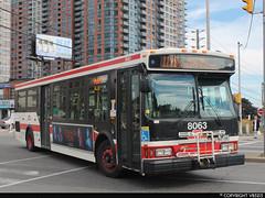 Toronto Transit Commission #8063 (vb5215's Transportation Gallery) Tags: toronto ttc transit orion commission vii 2007