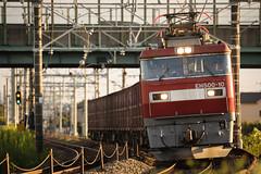 Freight train (Masaki Miida) Tags: japan railway  saitama kanto   jrfreight   jr tohokuline