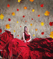 Fall greetings (veldreannija) Tags: autumn red people woman selfportrait color fall nature girl field leaves yellow photoshop photography leaf nikon dress fineart harvest latvia blonde greetings fineartphotography latvija rudens bigdress nikond5300