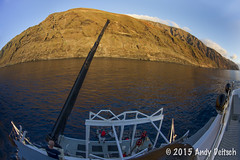 20151003-095832-01-Edit (andy_deitsch) Tags: 2015 guadalupeisland