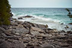 Wavey Beach (Alysha Koby) Tags: park blue canada beach water field 50mm nikon rocks aqua dof wind outdoor f14 bruce wave overcast canadian hike trail national shield peninsula fracture depth d800