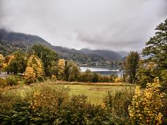 Kochelsee Herbstnebel