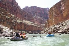 grand canyon2015 223