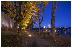 20151003. Narva. Promenaad. 9000 (Tiina Gill (busy)) Tags: autumn light tree fall night outside evening maple estonia path narva