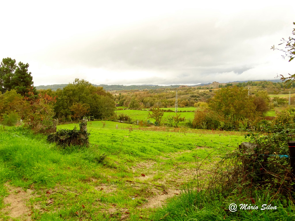 Águas Frias (Chaves) - ... campos verdejantes numa tarde de outono ...