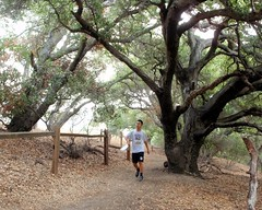 024 Running Past The Oaks (saschmitz_earthlink_net) Tags: california statepark losangeles orienteering santamonicamountains topangacanyon losangelescounty 2015 laoc losangelesorienteeringclub
