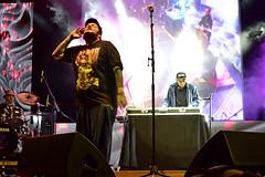 Pato Machete (Erik Alcantara) Tags: music control hip hop rap machete música