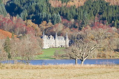 A walk to the castle (PeterYoung1.) Tags: uk autumn trees castle nature beautiful landscape scotland colours scenic scottish atmospheric canon100400 canon7d peteryoung1