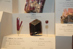 Elbaite tourmalines (1) (OttawaRocks) Tags: smithsonian minerals tourmaline elbaite