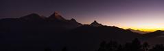 Annapurna Sunrise (Noby Yamamoto) Tags: nepal mountains sunrise himalaya poonhill machapuchare annapruna