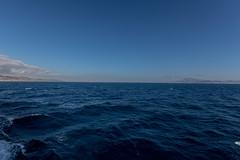 Europa - Afrika (bollene57) Tags: 2016 hafen heimreisemarokko marokko marokko2016 meer schiff tanger tarifa ruerei