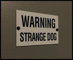 Strange Dog (~ Lone Wadi Archives ~) Tags: strange dog weird sign signage indoors americansouthwest warning caution danger mesaarizona