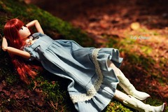 Amoreen relaxes in the forest (♥ Lily Queens ♥) Tags: amoreen momoko minna de tsukuru fan vote doll 2012