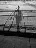 Project 365 - Eyes on the ground (Pascal Heymans) Tags: amberes antwerp antwerpen anvers belgica belgien belgique belgium belgië flandre flandres fotokunst pad pictureaday project365 vlaanderen city ciudad eyesontheground grond photo photography stad stadt ville be iphone5 pascalheymans
