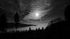 my days are darker than your nights (e27182818284) Tags: sigma1020mmf35exdchsm schwarzwald haigerach blackforest fog nebel