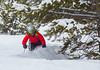 aa-2515 (reid.neureiter) Tags: skiing vail colorado mountains snow snowskiing alpineskiing sport sports wintersports