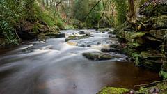 2017-01-17 Rivelin-7405.jpg (Elf Call) Tags: nikon rivelin river yorkshire water stream 18105 sheffield steppingstones waterfall d7200 blurred