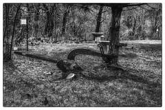 Old Tiller_DSC6911 photoshop NIK edit © (nkatesphotography) Tags: honeyhollownationalaudubon newhope nikond4 nikonafs35mmf18 scenic landscape outdoors historic farmequipment