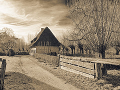 Old loam timber framing house. (enneafive) Tags: bokrijk loamtimberframing olympus omd em5 old museum rural willows monochrome