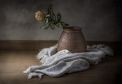 Puchero con flor (JACRIS08) Tags: stilllife ceramica bodegon light