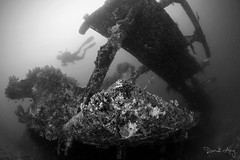 Bounty (Randi Ang) Tags: bountywreck bounty wreck gili meno lombok indonesia underwater scuba diving dive photography wide angle randi ang canon eos 6d fisheye 15mm randiang