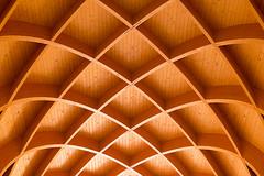 Wooden ceiling (Jan van der Wolf) Tags: map166241v curves lines playoflines interplayoflines symmetric symmetrie geometric geometry plafond wood hout ceiling planken planks museum louwmanmuseum spanten rafter frame timber patroon structuur structure