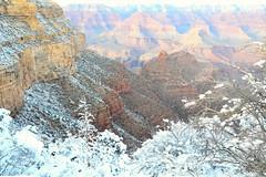 Grand Canyon 67 (Krasivaya Liza) Tags: grandcanyon grand canyon national park canyons nature natural wonder az arizona holiday christmas 2016 snowy winter cliffs cliffside edgeofcliff