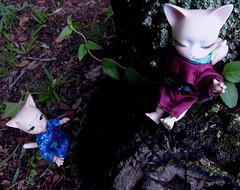 She's a climber (Cydril) Tags: cat jr pi vanilla bjd ringo anthro heero pipios