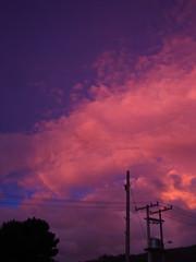 No. 858 - 19 de agosto/15 (s_manrique) Tags: azul postes atardecer cables cielo rosado