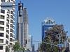 Downtown San Diego 9-5-15 (47) (Photo Nut 2011) Tags: california downtown sandiego harbordrive