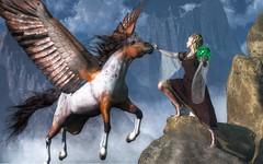 Elf Summoning a Pegasus (deskridge) Tags: pegasus magic elf fairy fantasy legend myth faerie elves fae elven flyinghorse wingedhorse eskridge elfqueen highfantasy femaleelf elfwoman elfmaiden danieleskridge elfsummoningapegasus