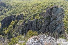 Pinnacle off Flinders Peak (NettyA) Tags: trees mountain clouds plaque landscape rocks track rocky australia ridge trail bushwalking qld queensland geology bushwalk ipswich pinnacle grasstrees volcanicplug 2015 xanthorrhoea bushwalkers seqld flinderspeak flindersgoolmanconservationestate rhyolitepeak sonya7r