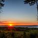 Spruce Framed Sunrise