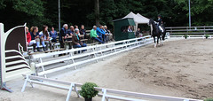 Doorn (Steenvoorde Leen - 2.5 ml views) Tags: doorn manege arreche paarden springen manegedentoom dressuur sgw 2015 utrechtseheuvelrug horse pferd paard pferde horses jumping reiten cross