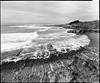 Pebble Beach (Summicron20/20) Tags: camera field inch g os rodinal ulf ilford fp4 v10 f9 schneider 125 claron deardorff 10x12 355mm