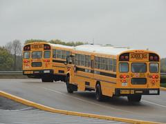 Bourbon County Schools (Nedlit983) Tags: blue school bus bird vision
