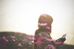 find you... (another side view) Tags: light woman plants plant flower art nature japan female digital 50mm artwork nikon df f14 sigma multipleexposure  wilderness   cosmos  artworks  backshot  artline    naturepeople womanportrait    nikondf df