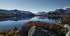 Mirror... (bent inge) Tags: mountain fall norway october hiking telemark haukeli 2015 vinje haukelifjell norwegianmountains bentingeask