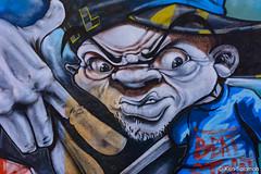 _DSC2556.jpg (kensol72) Tags: streetart art animals graffiti mural australia melbourne brunswick piece 70300mm dx d7100