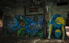 Fisher Body Plant 21 - Detroit (IV2K) Tags: urban graffiti decay michigan sony detroit parrot urbanexploration fisher exploration a7 urbex fisherbody fisherbodyplant21