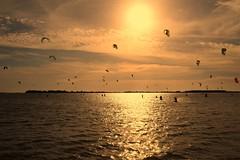 Mothia, Sicily, October 2015 347 (tango-) Tags: italien italia italie sicilia mozia sizilien sicilie motzia kitesurfmozia kitesurfsicilia