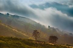 Cala la nebbia (f_foschi.) Tags: nuvole natura lucca toscana nebbia colori montagna atmosfera bagnidilucca allaperto albereta pratofiorito nikond7100