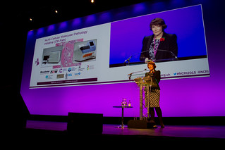 2015 NCRI Cancer Conference  (20)