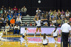 BYU Women's Volleyball - Star Player About to Spike the Ball (aaronrhawkins) Tags: ladies girls net college sports girl ball court championship hit team jump women university kill action aaron crowd gray indoor womens match spike volleyball cheer alexa ncaa gym leap usf hawkins byu brighamyounguniversity smithfieldhouse