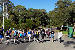 20151115-23-Point to Pinnacle 2015 (Roger T Wong) Tags: people race walk crowd australia run tasmania hobart funrun ferntree 2015 pointtopinnacle carlzeiss35mmf28 rogertwong sel35f28z sonyfe35mmf28zacarlzeisssonnart sonya7ii sonyilce7m2 sonyalpha7ii