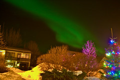 Jólaljós og norðurljós (skolavellir12) Tags: christmas night dark lights iceland north aurora ísland borealis jól selfoss