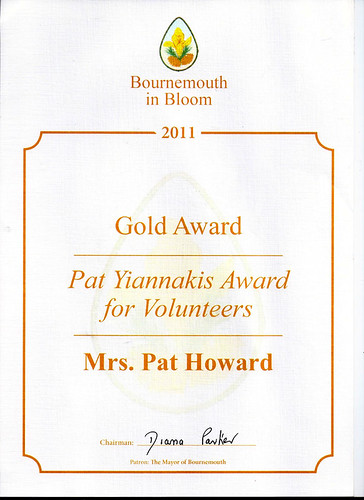 2011 Pat Yiannakis Volunteer Award_1 by Rad Howard