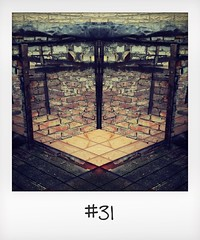 """#DailyPolaroid of 29-10-15 #31 • <a style=""""font-size:0.8em;"""" href=""""http://www.flickr.com/photos/47939785@N05/23450443155/"""" target=""""_blank"""">View on Flickr</a>"""